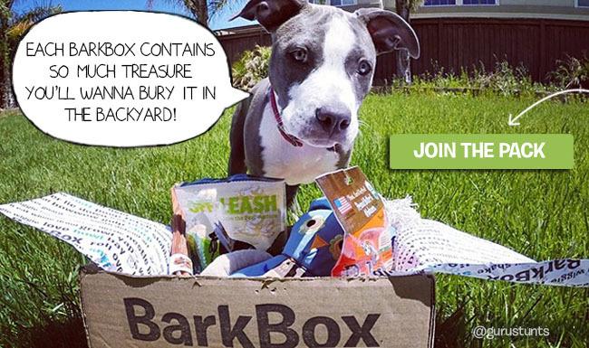 BarkPost Pinterest