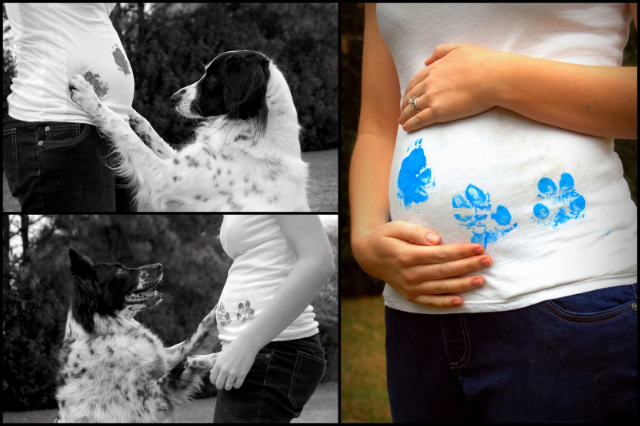 Creative Ways To Include Your Dog In Your Next Big Announcement