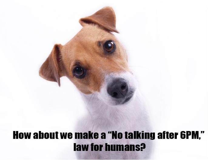 Image via Dog Behaviour Solutions