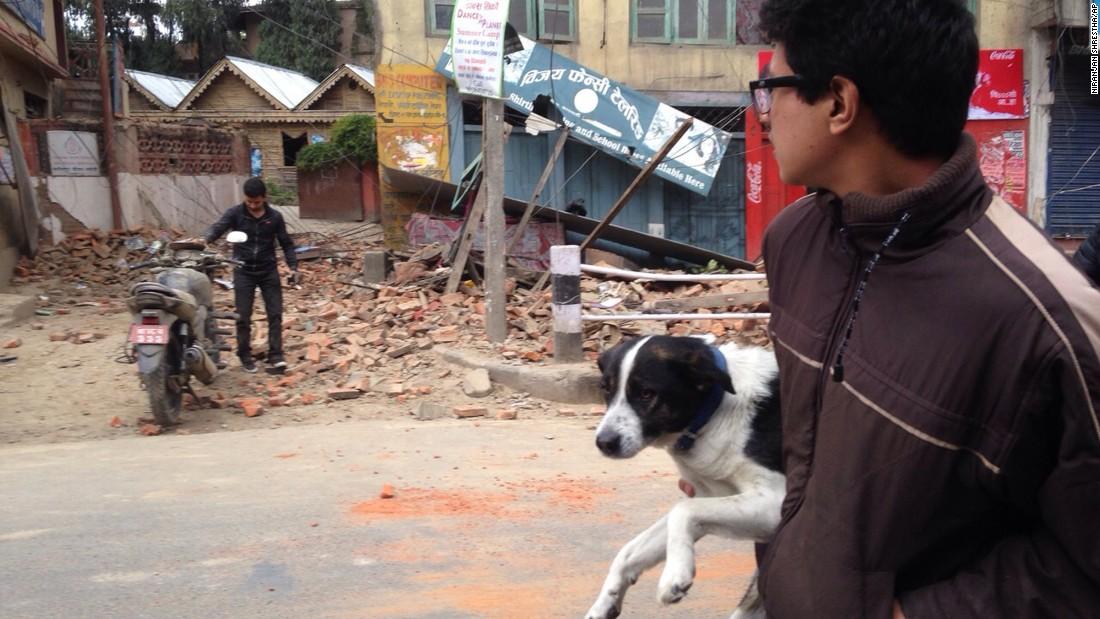 nepal earthquake dog