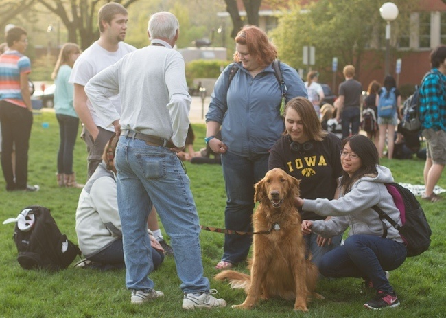 University of Iowa Therapy Dogs