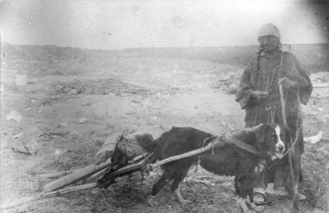 lakota dog sioux 7-1952-6303-2-Dog-travois-optimized