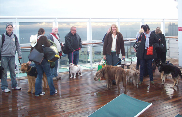 Queen Mary  Dog Kennels Coast