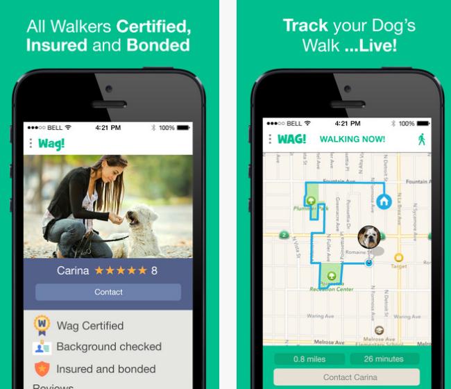 wag-dog-walk-app