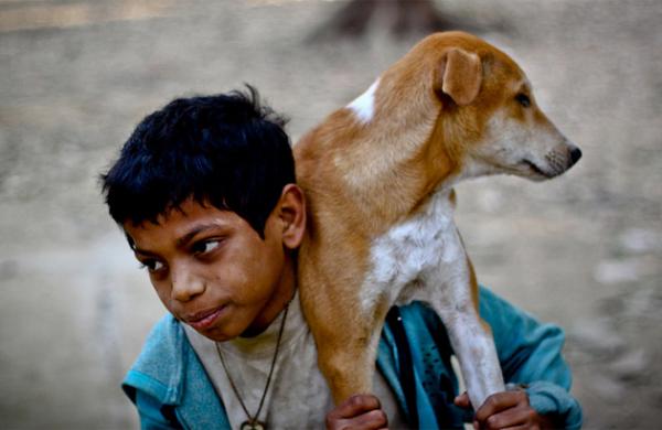 kid-holding-dog