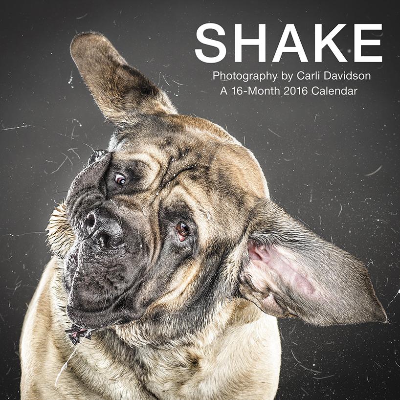 Shake Calendar