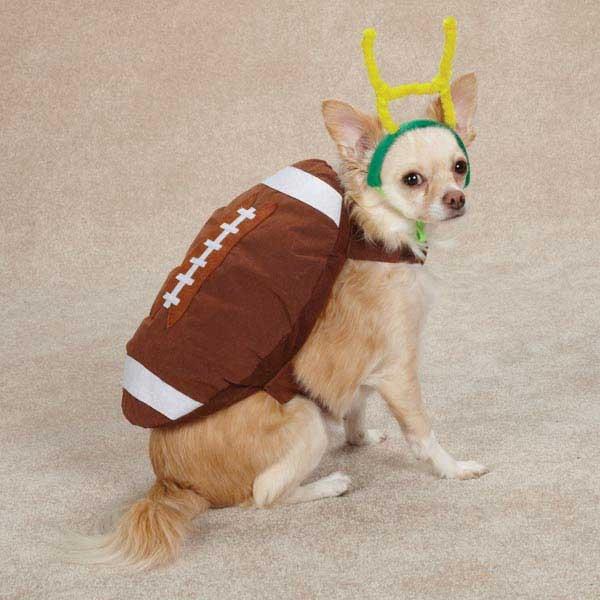 Touchdown Hound Dog Costume