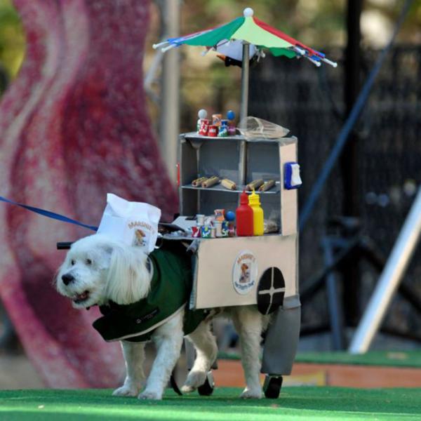 tompkins-square-dog-parade