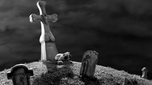 Frankenweenie Sparky in Cemetery