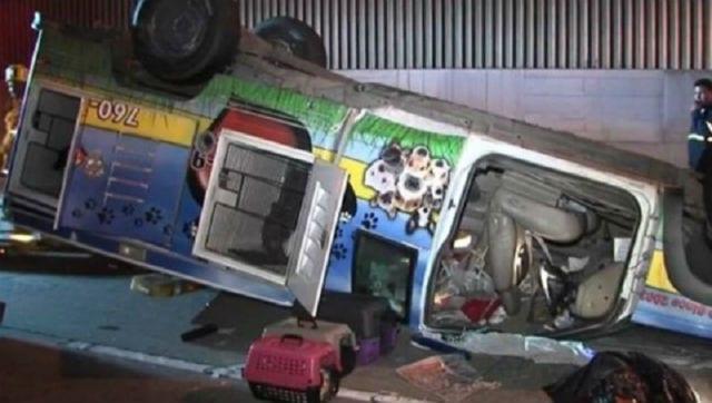 animal-rescue-truck-flip-fwy-5