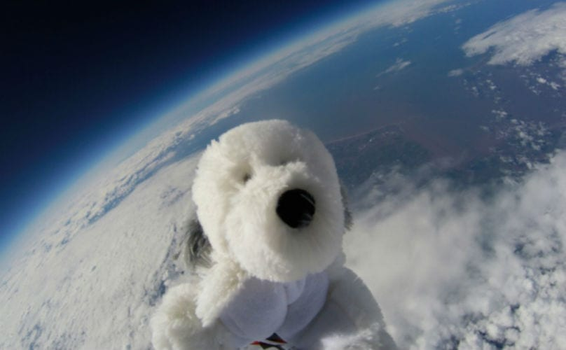 Elementary School Students Launch Fake Dog Into Real Space ...