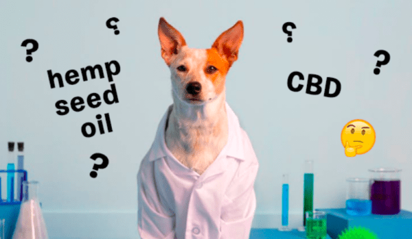 Don't Get Confused: What's The Difference Between Hemp Oil