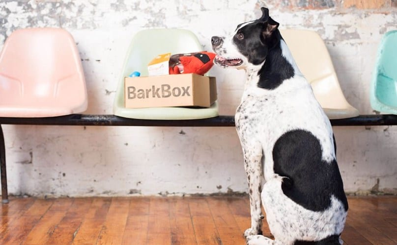 What comes in a barkbox subscription box for dogs