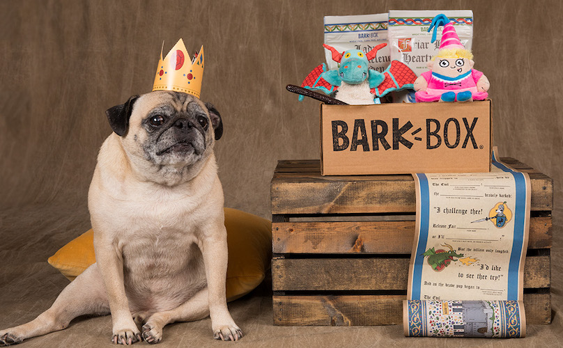 Pug Noodle BarkBox Knights Of The Hound Table